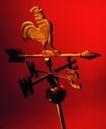 世界指南0047,世界指南,科技,公鸡 架子 射箭