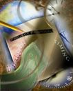 抽象金融0013,抽象金融,金融,世界 经济体 一体化 汇率 签署