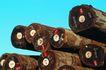 工业生产0048,工业生产,工业,编号 树木 木头