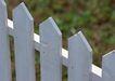 花草分类0250,花草分类,园林,尖头 护栏 白色