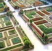 花草分类0284,花草分类,园林,小草堆成的几何图形 十字路 人工园圃