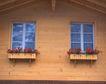 外窗绿化0057,外窗绿化,园林,木屋 木板 墙壁