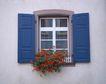 外窗绿化0061,外窗绿化,园林,开窗 花香 迷人