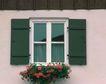 外窗绿化0067,外窗绿化,园林,深蓝 玻璃窗 光亮