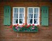 外窗绿化0070,外窗绿化,园林,实木 小屋 构建