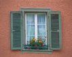外窗绿化0077,外窗绿化,园林,窗台 盆景 装饰