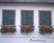 外窗绿化0078,外窗绿化,园林,玫瑰 花台 窗口