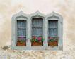 外窗绿化0087,外窗绿化,园林,绿化 保护 花草