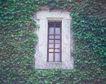 外窗绿化0088,外窗绿化,园林,绿色 设置 园林