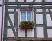 外窗绿化0094,外窗绿化,园林,窗外 景色 绿化