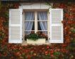 外窗绿化0096,外窗绿化,园林,花丛 植物 窗户