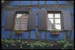 外窗绿化0099,外窗绿化,园林,木头 窗户 藤条