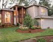 园林别墅0207,园林别墅,园林,花围 松树 后院