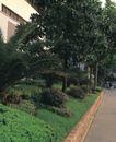 园林绿化0126,园林绿化,园林,路人 行走 小区 小区环境 清洁