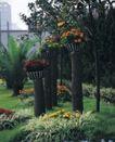 园林绿化0132,园林绿化,园林,木桩 盆栽 菊花 太阳花 铁树