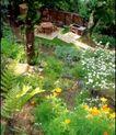 园林绿化0145,园林绿化,园林,公园   参天大树   田园