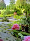 园林绿化0160,园林绿化,园林,鲜花 园林 新鲜
