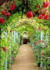 园林绿化0161,园林绿化,园林,走廊 缸 花