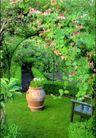 园林绿化0162,园林绿化,园林,坛  花丛中  木椅