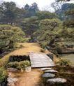 园林绿化0167,园林绿化,园林,迎客松  小木桥  池塘