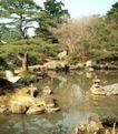 园林绿化0168,园林绿化,园林,青松 枯燥 水中倒影