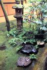 园林绿化0173,园林绿化,园林,青苔 顽石 潮湿