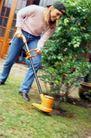 园林种植0122,园林种植,园林,整理草坪 除草 除草机 手动 劳动