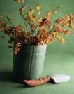园林种植0127,园林种植,园林,花卉 盆栽 花盆 插花 摆饰