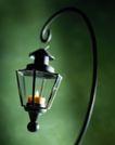 园林种植0128,园林种植,园林,蜡烛 吊灯 灯具 装饰灯 照明