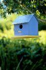 园林种植0131,园林种植,园林,小房子 鸟笼子 喂食 养鸟 爱护