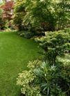 园林种植0137,园林种植,园林,后花园