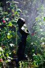 园林种植0139,园林种植,园林,雕塑