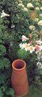 园林种植0144,园林种植,园林,花盆    绿荫   花卉