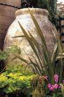 园林种植0153,园林种植,园林,大坛子 巨坛 花草