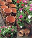 园林种植0171,园林种植,园林,空花坛 堆叠 各色花