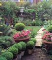 园林种植0173,园林种植,园林,盆景 红花绿叶 修剪得细致
