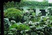 名院0122,名院,园林,假山 形态各异 活灵活现 逼真 艺术