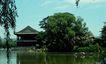 名院0131,名院,园林,烟花三月 柳丝飘舞 莺声清丽 轻舟 西湖美景
