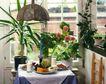餐厅0102,餐厅,装饰,餐桌  食物  小花