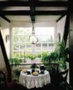 餐厅0133,餐厅,装饰,白色桌布 花草 布置 喝茶 情调