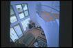 客厅0070,客厅,装饰,纯蓝 暖色 情调