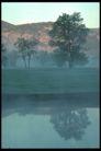 欧洲风情0192,欧洲风情,世界风光,情侣树 树的倒影 山头