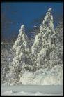 欧洲风情0195,欧洲风情,世界风光,银装素裹 雪的世界 冬天