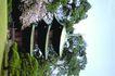 日本风情0063,日本风情,世界风光,林间 凉亭 阁楼