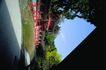 日本风情0072,日本风情,世界风光,林地 红色 栏杆