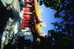 日本风情0079,日本风情,世界风光,树荫 黑色 斑驳