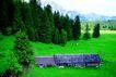 瑞士风情0035,瑞士风情,世界风光,农场 景色 树林