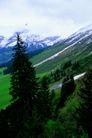 瑞士风情0042,瑞士风情,世界风光,风景秀丽 万物争春 芳草如茵