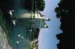 苏格兰风情0036,苏格兰风情,世界风光,广场 水域 天鹅