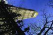苏格兰风情0055,苏格兰风情,世界风光,枯萎 树枝 塔楼
